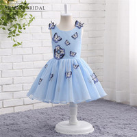 Sky Blue   Flower     Girl     Dresses   For Weddings 2017 Vestido Daminha Embroidery Tulle Cap Sleeve Children Evening Party   Dress