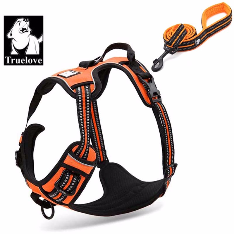 Nylon Dog Harness 30