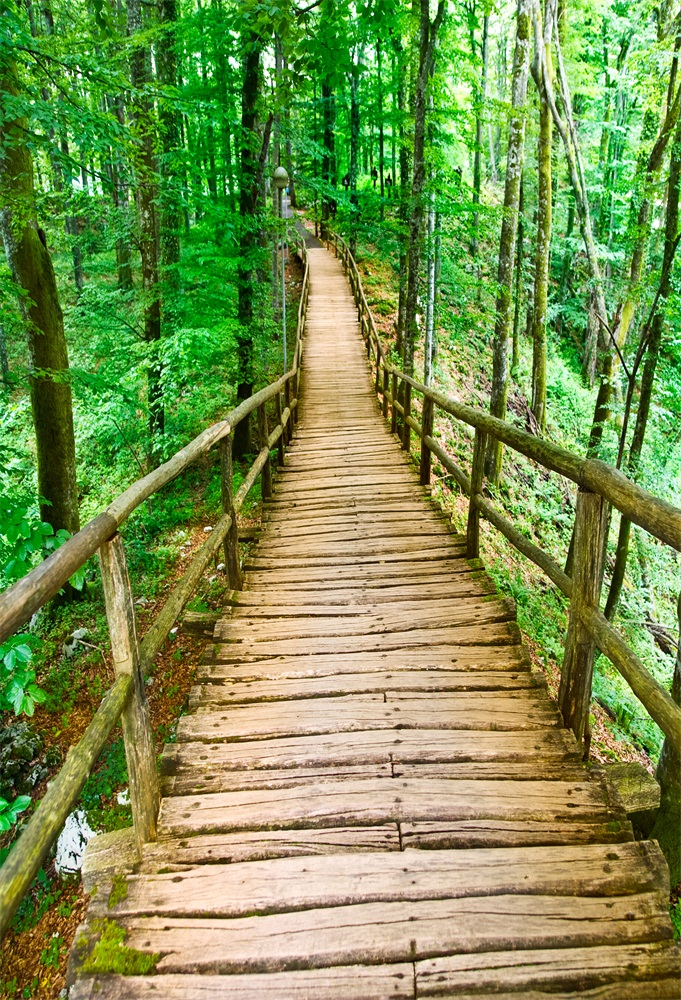 Laeacco Forest Wooden Bridge Walkway Photography Backgrounds Vinyl Customizable Photography Backdrops Props For Photo Studio