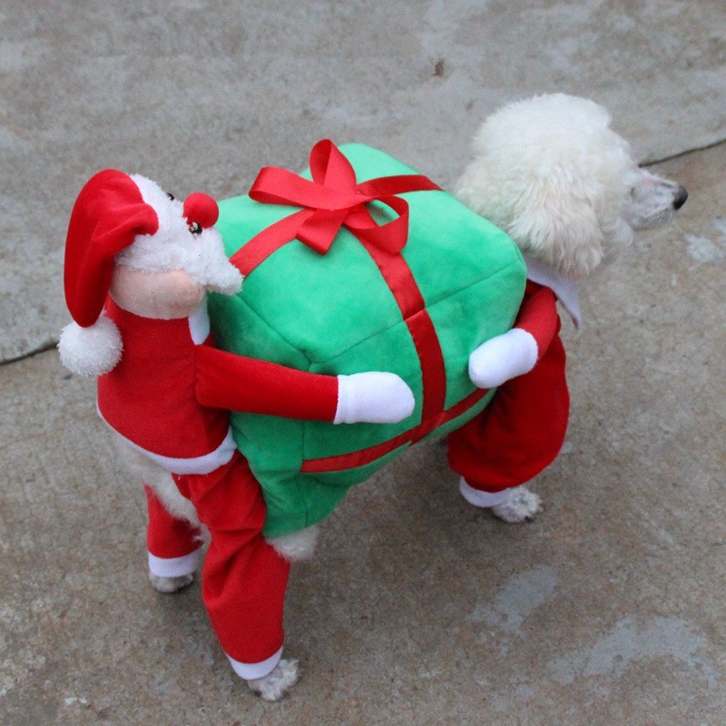 Christmas Dog Clothes (2)