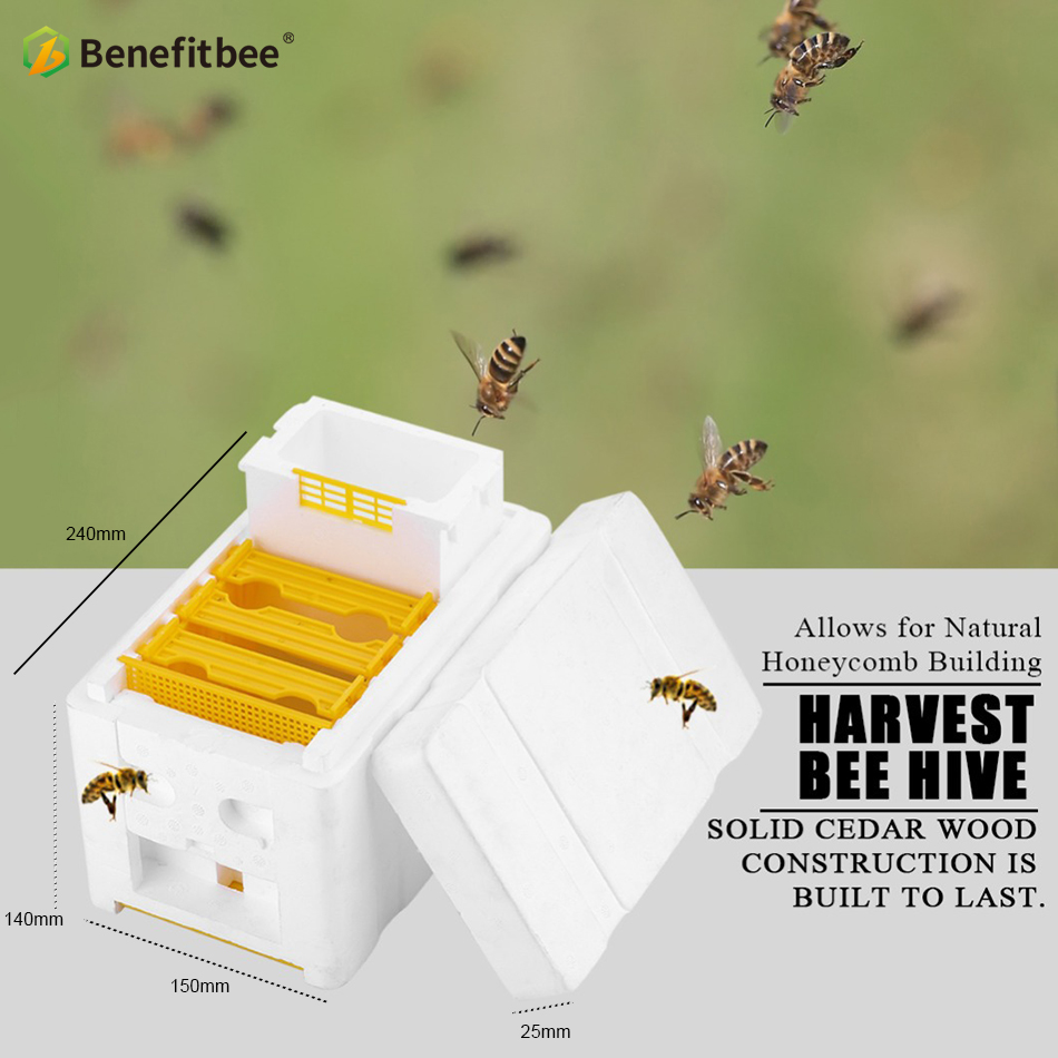 Image 3 - Beekeeping BeeHive Box Harvest Beehive Queen Mating Hive Benefitbee Brand Queen Mating Beehive Beekeeping Tool Apiculture-in Bee Hives from Home & Garden