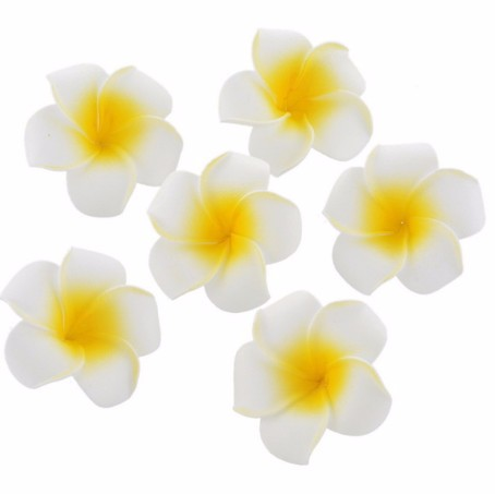 100pcs hawaiian plumeria frangipani artificial silk egg flower heads 100pcs hawaiian plumeria frangipani artificial silk egg flower heads wedding decor 4cm in artificial dried flowers from home garden on aliexpress mightylinksfo