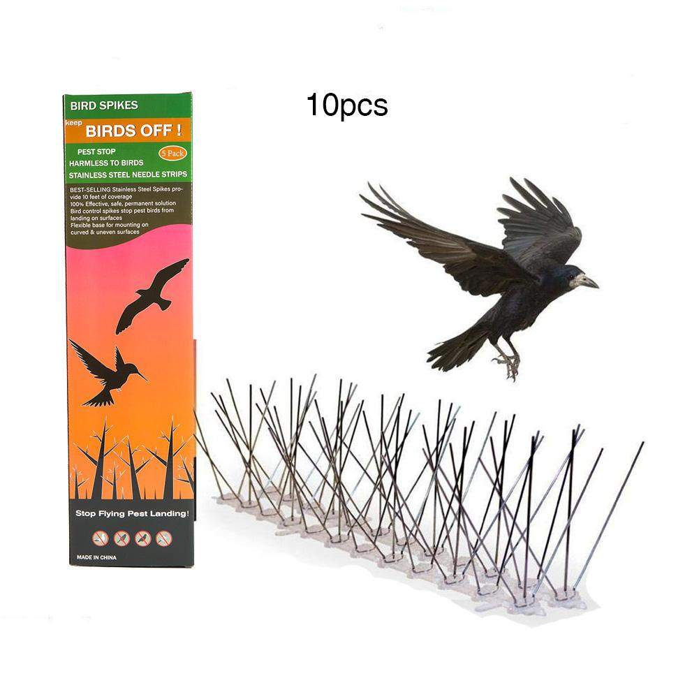 All kinds of cheap motor spikes to pigeons in All B