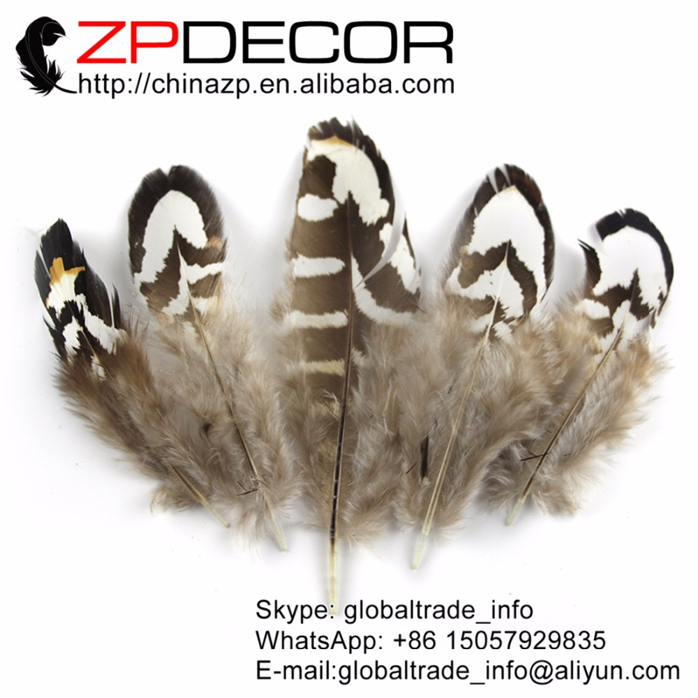 Tiny Black and White Reeves Venery Pheasant Plumage feathers (2)3