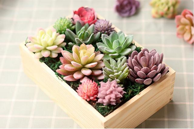 10 Unids Artificiales Coloridos Plastico Pvc Plantas Suculentas Flor