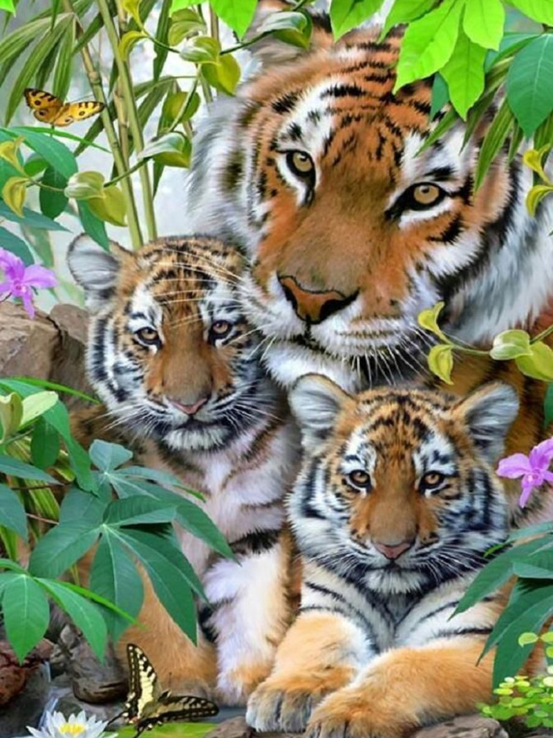 3D Diy Happy Tiger Family Diamond Painting Cross Stitch Embroidery New 100% Full Square Drill Diamond Painting Home Decor Gift