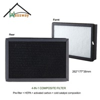 262x177x38mm Filter activated carbon cold catalyst composite filter HEPA with air purifier