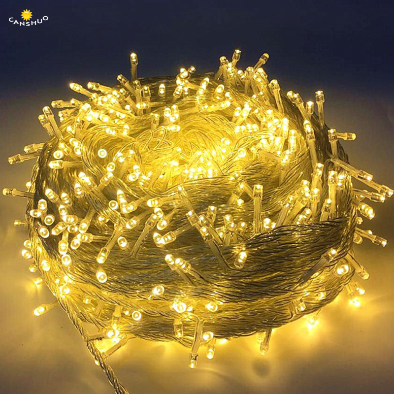 AC220V Outdoor Led String Lights 10 20 30 50 100M Waterproof Led Holiday Lamp Beads Wedding Christmas New Year Garden Decoration