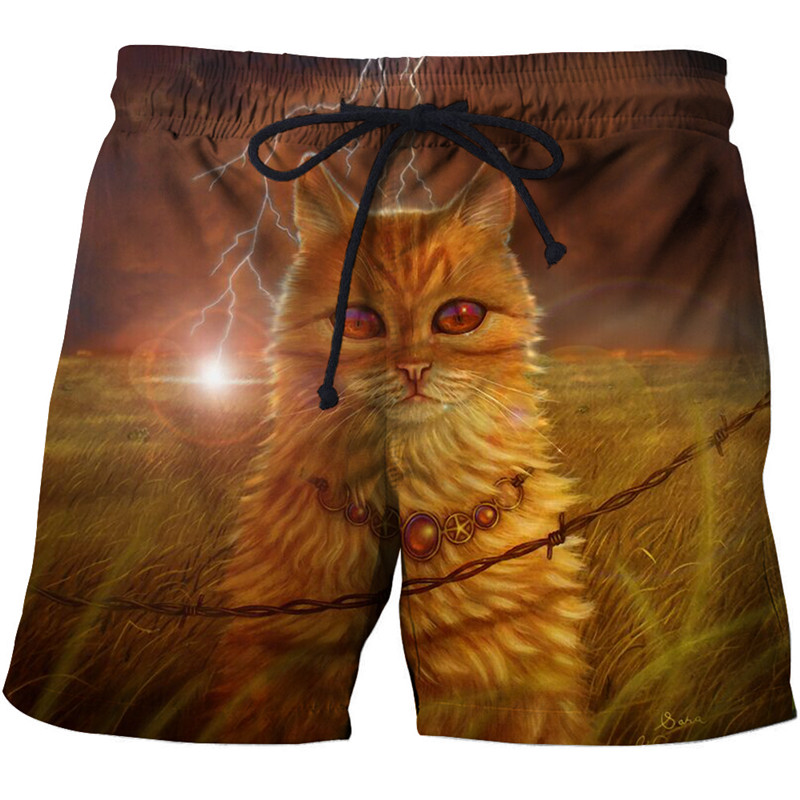 Kitty print beach   shorts   men's 3d fashion checkered funny animal beach pants quick dry   board     shorts   under swimwear