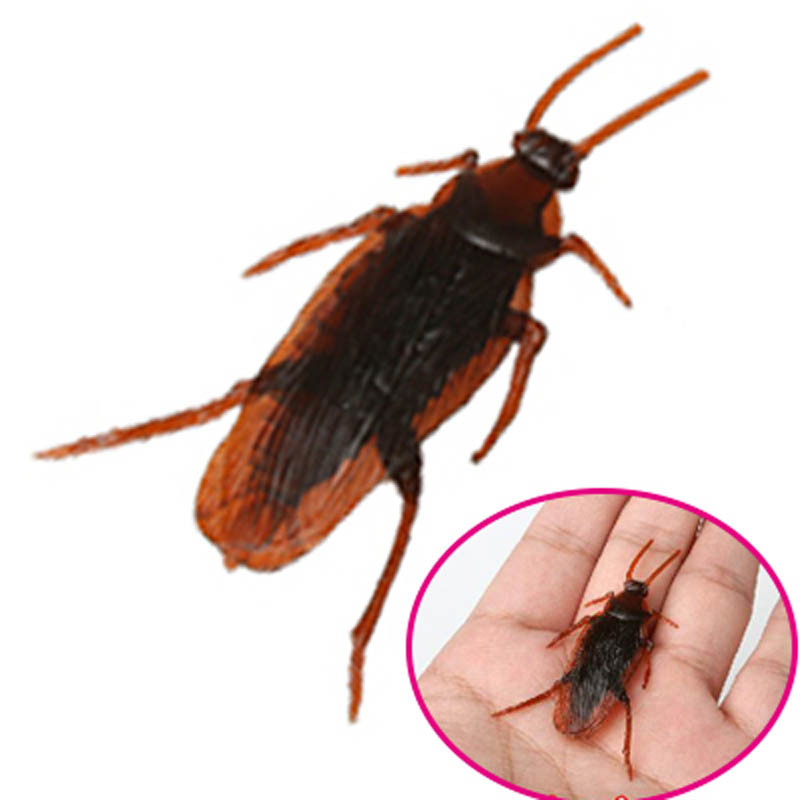 Shock Toys Simulation Cockroaches Xiaoqiang Insect  Magic Props NSV775
