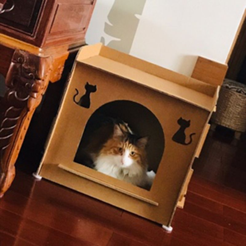 Pet Cat Scratcher Kitten Cat House shaped Nest Sleeping Bed Paw Grinding Chew Toy in Cat Beds Mats from Home Garden