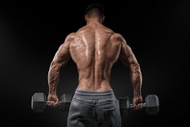 muscular men bare muscle back bodybuilder workout yr033 living room
