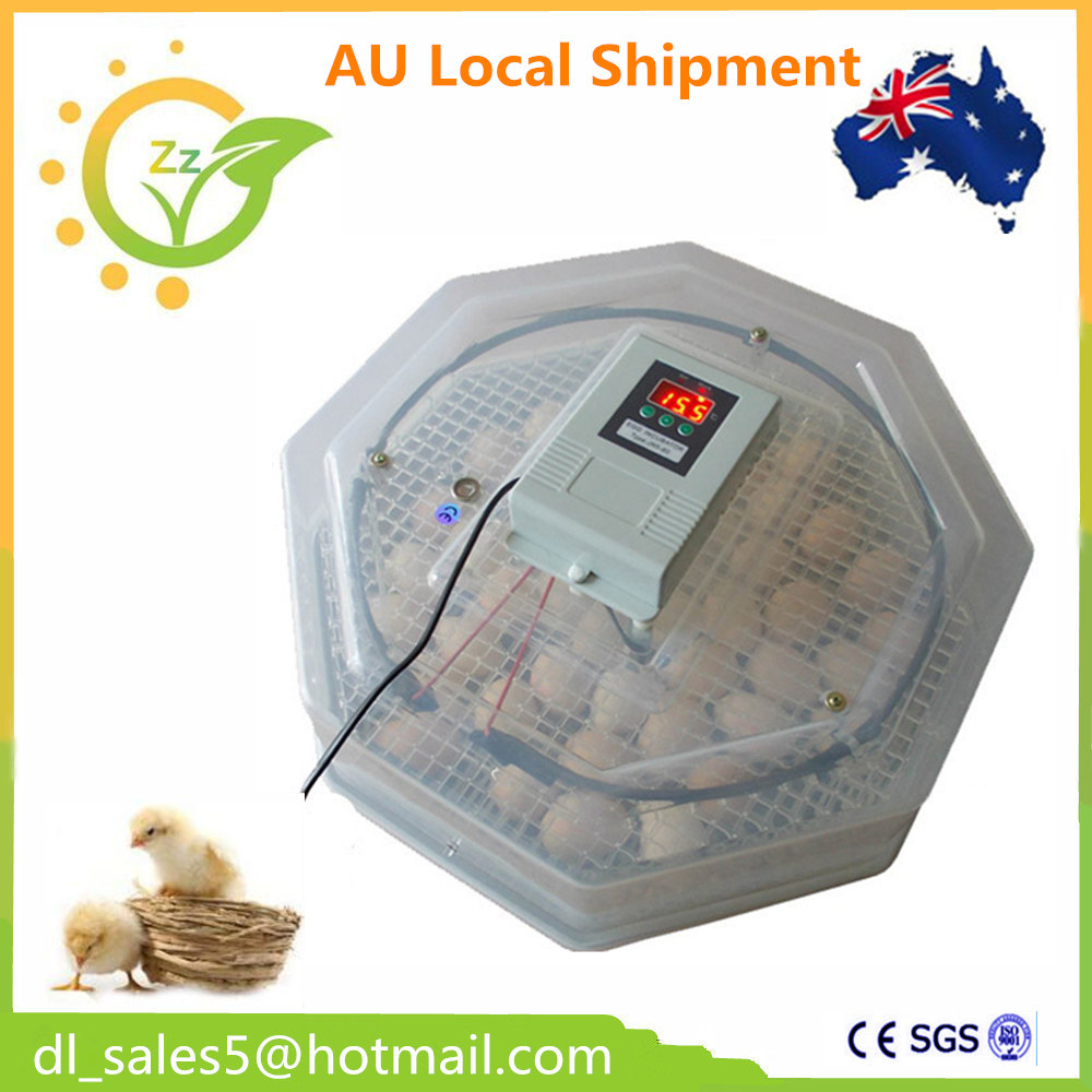 ФОТО fast Ship from Australia ! Fully automatic cheap egg incubator 60 eggs hatchery brooder machine for chicken duck quail bird