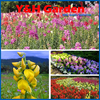 6000pcs Snapdragon Seeds Potted Plants Flower Seeds Family Four Seasons Planting Snapdragons High Survival