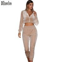 Casual Velvet Tracksuit Women 2 Piece Sets 2017 New Autumn Outfits Suits Long Sleeve Crop Tops
