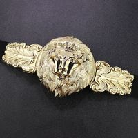 Womens luxury big Gold Lion Head Belt Designer belts for women Dress Stretchy ceinture femme Woman Fashion Accessory bg-080