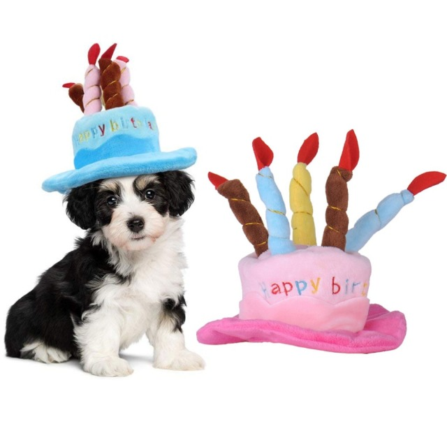 Pet Cap Cute Dog Birthday Hat With Cake Candle Hats Outdoor Caps