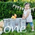 EEN 1st Verjaardag foto props een voor foto houten letters Eerste Verjaardag EEN foto props een