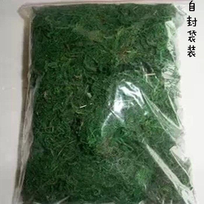 тегін жеткізу Табиғи өсімдік шөп Moss - Бақша өнімдері - фото 2