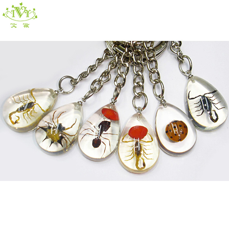 25 keychain scorpion mixed insect Pressed colorful jewelry