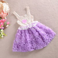 Hot Sale New Design Lace Rose Baby Girls Dress Kids Clothes Princess Baby Dress Free Shipping