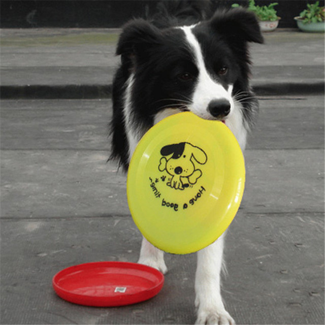 Cane Giocattoli di Plastica Trainning Puppy Fetch Flying Disc Frisby Toy