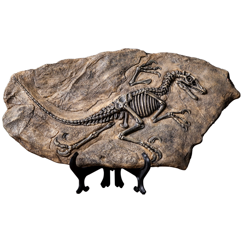 Inventive Retro Dinosaur Specimen Fossilized Mannequin Pendant Store Dwelling Room Residence Wine Cupboard Decorations And Crafts