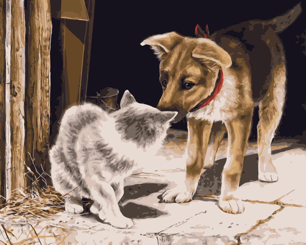 Днем рождения, смешные рисунки собак и котов