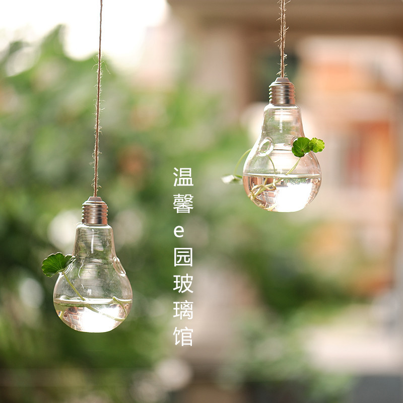 2pcs Set Lightbulb Terrariums Hanging Glass Planter Vase Air Plant