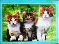 300 Шт. 500 Шт. 1000 Шт. Милые Кошки Бесплатные Онлайн Головоломки головоломки Бумажные Игрушки для Детей Раннего Образования Игрушки Детские Подарок На День Рождения