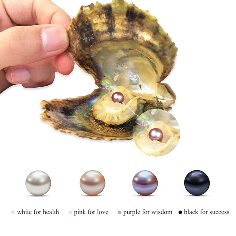 Hongye Pearl Oyster Multi Color Rice Bead Wishes Pearl Oyster DIY Birthday Gifts Random Color Mussel Fashion Women Accessories in Beads from Jewelry Accessories