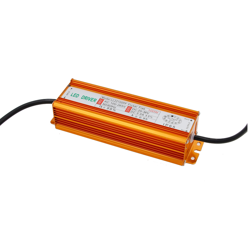 50W 100W High Power Constant Current LED Driver Waterproof IP66 Power Supply AC110-265V Input For Floodlight DC20-40V Output