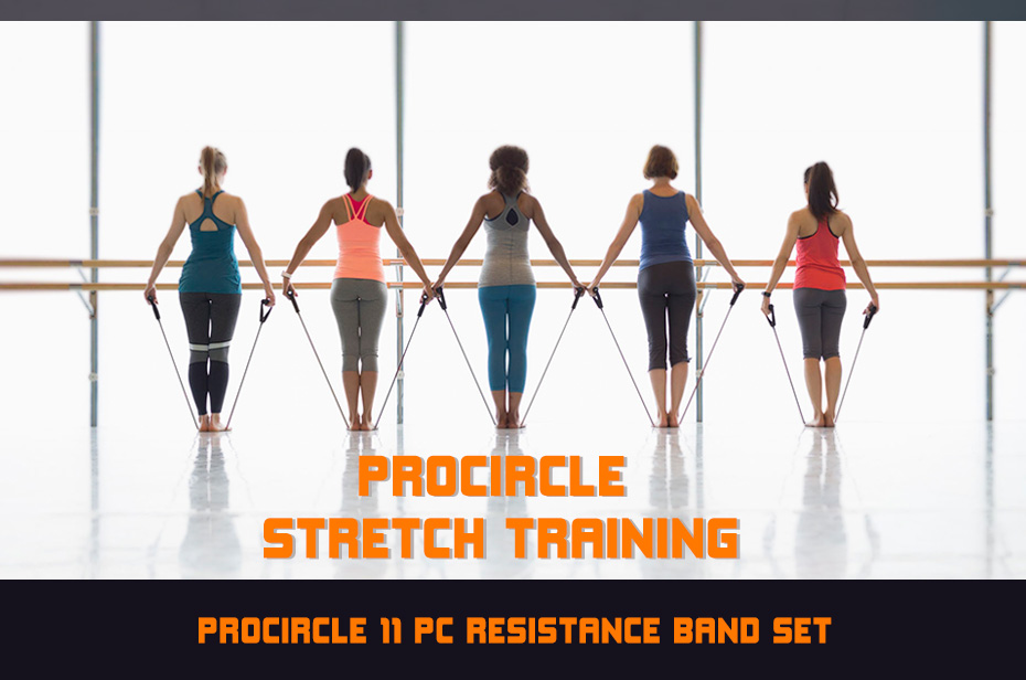 US $16 06 31% OFF|Procircle Resistance Bands set 16 Pcs Expander Tubes  Rubber Band For Resistance Training, Physical Therapy, Home Gyms Workout-in