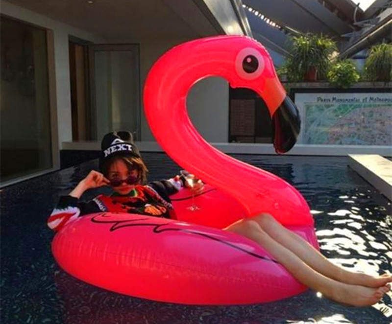 Huge swimming tube pool vison water float inflatable party toys air huge inflatable sea Flamingo (10)