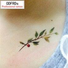(Min Order $0.5) Waterproof Temporary Tattoo Tatoo Henna Fake Flash Tattoo Stickers Taty Tatto Olive Branch SYA024