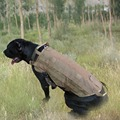 5 Size Army Tactical Dog Vests Outdoor Military Dog Clothes Load Bearing Harness SWAT Tactical Dog Training Vest Harness