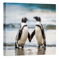 Modern Wild Animal Painting Canvas Prints African Penguin On The Sandy Beach Picture Wall Art for Home Decor Artwork