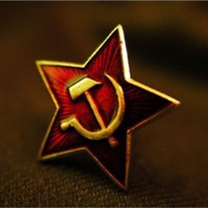 Russia USSR Cap Badge Lapel Pins Vintage Antique Classics Retro Metal Badge Army Souvenir Collection The Red Army Star