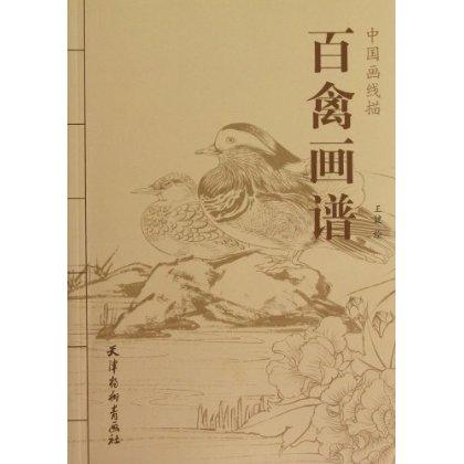 Bird - Chinese line drawing Hua Pu / Jian / line drawing bird feathers portfolio bird manuscript copy template chancellor manuscript the