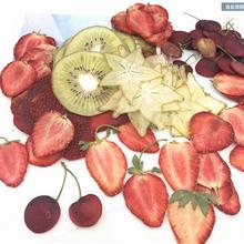 Plant-Herbarium Craft Making-Accessories Fruits-Slices Dried DIY Pressed Jewelry Photo-Frame