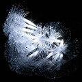2.5 М 10 led Волоконно-оптические Огни Строки для Наружного Рождество Хэллоуин Украшения А. А. батарейках Освещения