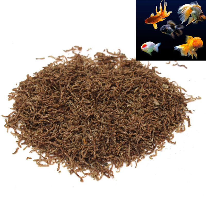 Online buy wholesale koi food from china koi food for Bloodworms for fish