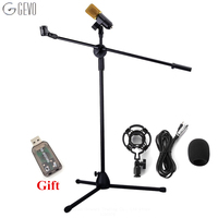 BM 700 Condenser Microphone With NB 107 Microphone Stand professional Computer Microphone BM 700 For KTV Studio Audio Recording