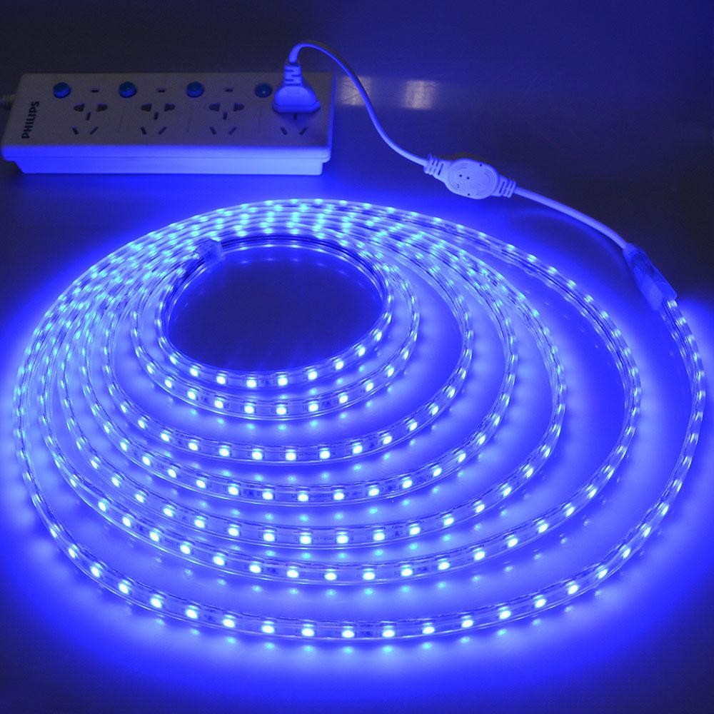 LED Strip 5050 220V Waterproof Flexible LED light Tape 220V lamp Outdoor String 1M 2M 3M LED Strip 5050 220V Waterproof Flexible LED light Tape 220V lamp Outdoor String 1M 2M 3M 4M 5M 10M 12M 15M 20M 25M 60LEDs/M