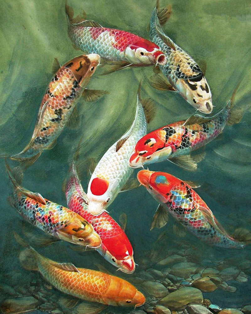 5D DIY Diamond Painting Fish Color Goldfish Lovers Embroidery ...