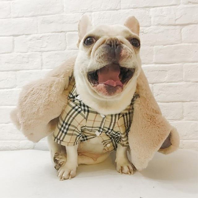 Dogs Winter Coat 3