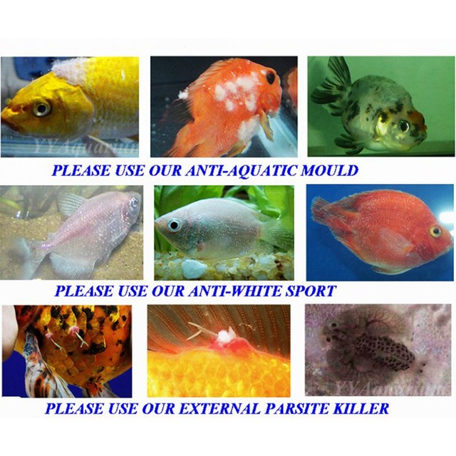 EXTERNAL PARSITE KILLER Aquarium tablets curing Fishes disease illness Parasites Flukes Slime fish Lice Fresh Salt water Marine