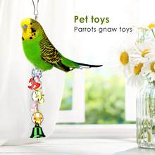 1Pcs Parrot Chew Toy Bird Toy Acrylic Metal String With Pacifier Bell Hanging On Bird Cage Courtyard Eaves Pet Funny Toys(China)