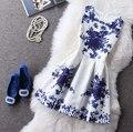 Платье трапециевидный без рукавов весна, и осень женское платья контейнер жаккард винтажный цифровой принт лён