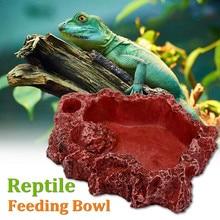 Resin Reptile Feeding Bowl Pet Amphibians Snake Tortoise Lizard Food Feeder Water Drinker Dish Dispenser Holder Feeding Supplies